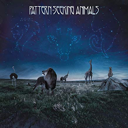 Pattern-Seeking Animals